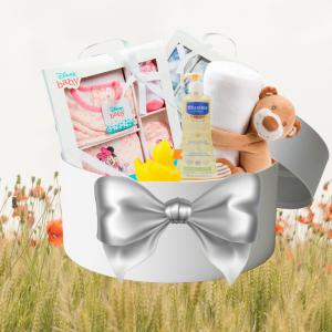 Babyboom Giftbox